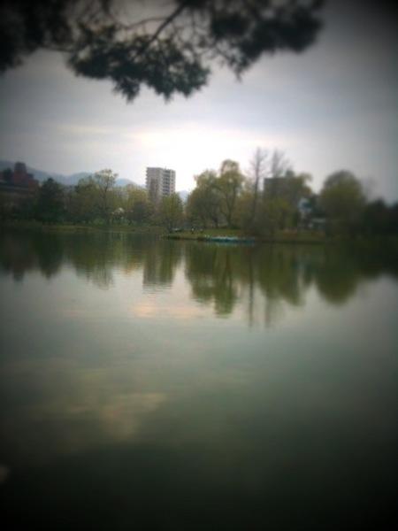 IMG_0598.jpg